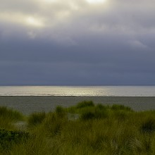 A view of dunes, a flat beach, and a calm sea. Credit: Genevieve de Messieres.